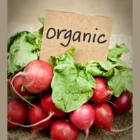 The Dirty Dozen: Which Foods to Eat Organic