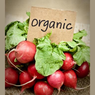 organic radishes copy